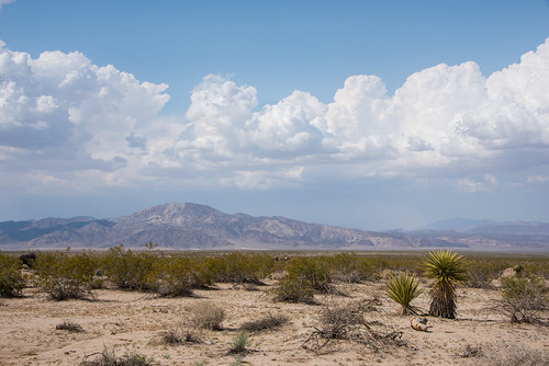 Clouds and Pinto Mountain | by Joshua Tree National Park