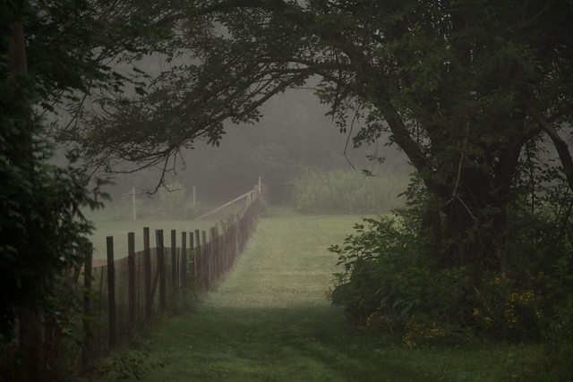 The-Fence-Line