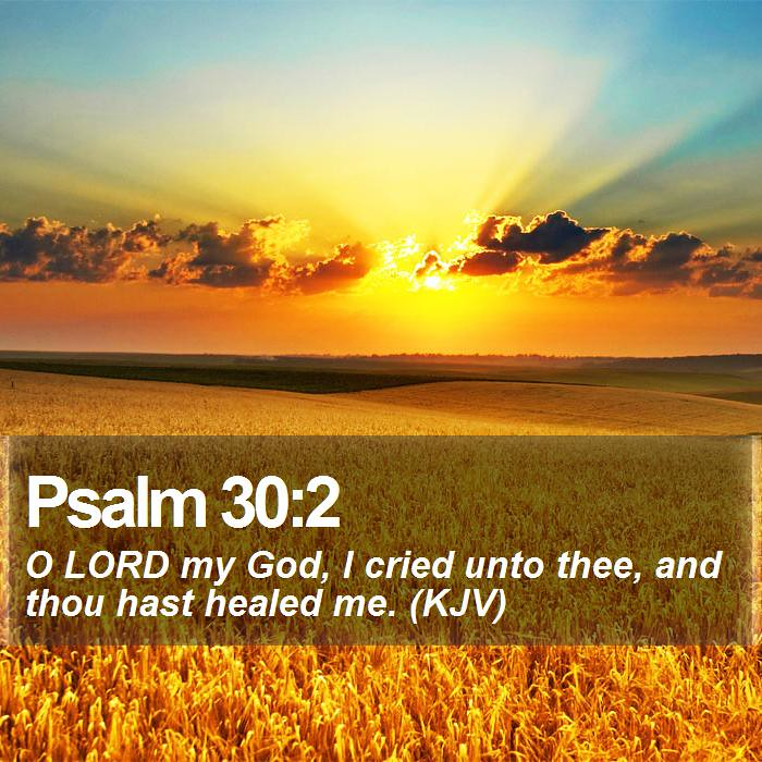 Daily Bible Verse - Psalm 30:2 | Psalm 30:2 O LORD my God, I