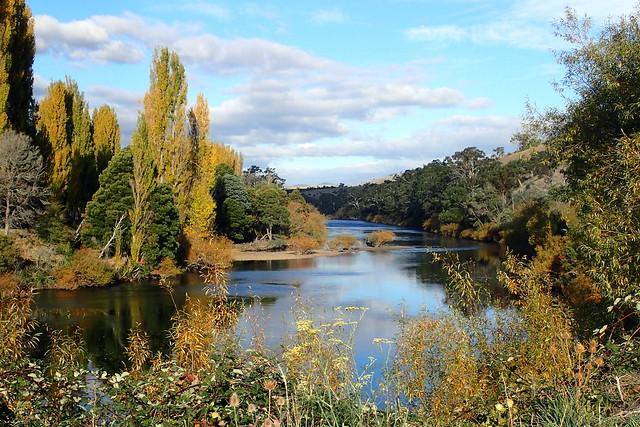 Autumn Colours - River Derwent - New Norfolk