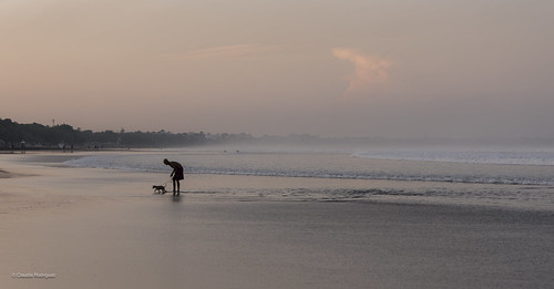 summer beach candidshot cheerfulness dawn dog exterior fog happiness happy haze joy landscapeorientation landscapephotography mammal ocean outdoor person pink romance sand sunrise water weather