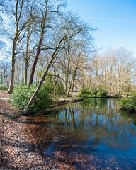 Belgium, Antwerp, Middelheim park