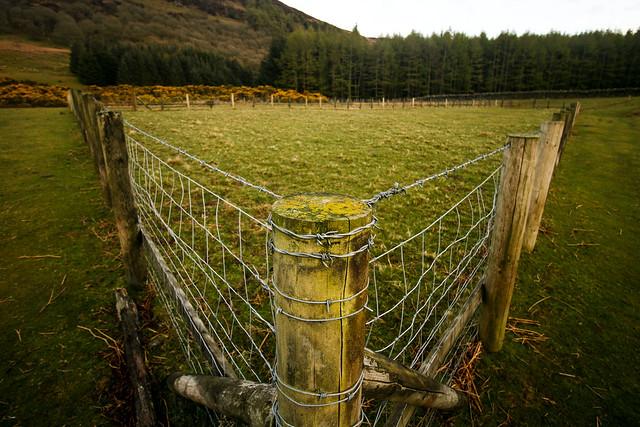 V Fence