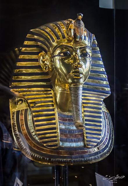 المتحف المصري #10