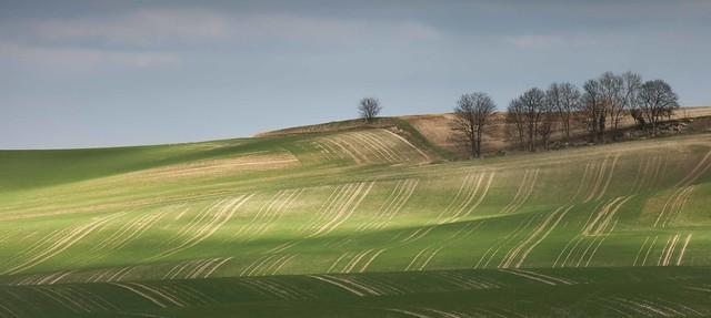 North Hertfordshire
