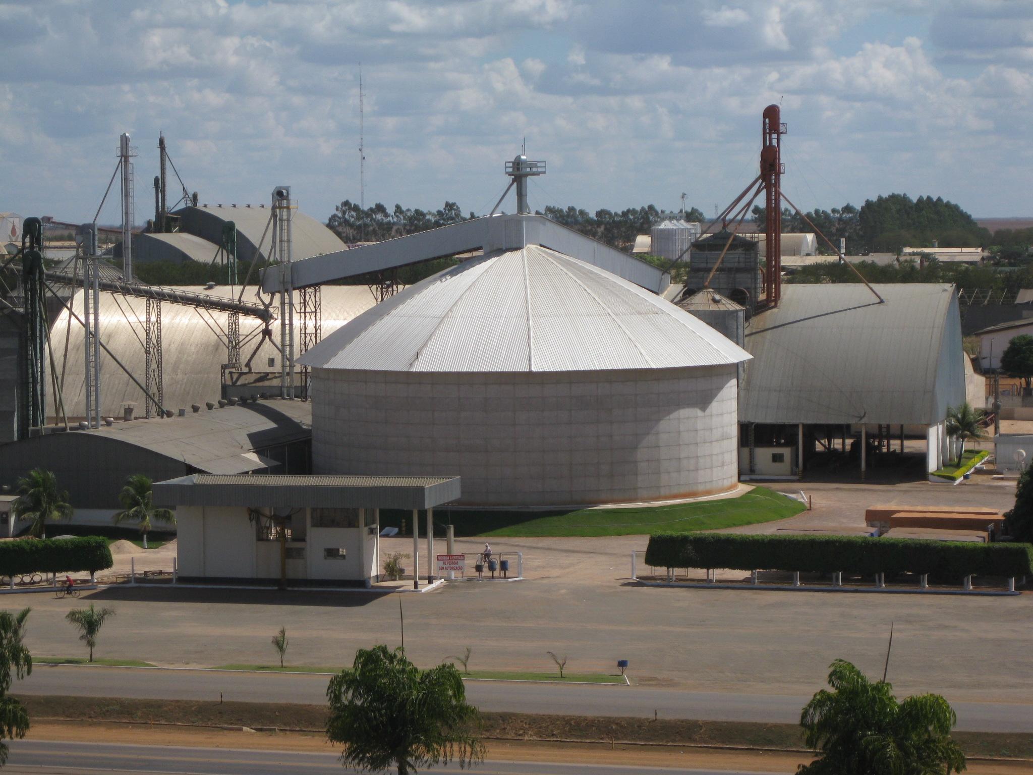 Brasil depende de lluvias que necesitan un sostén forestal