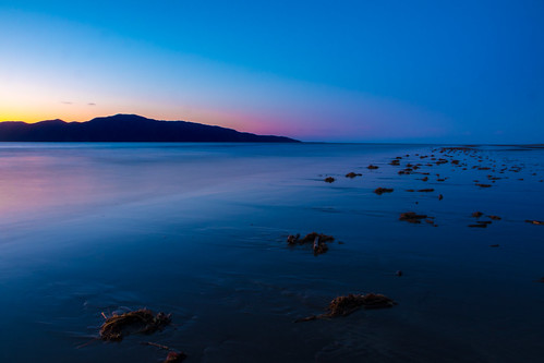 longexposure blue sunset newzealand seascape seaweed beach nature landscape island evening twilight nz wellington northisland coastline bluehour kapitiisland paraparaumu kapiticoast coastallandscape paraparaumubeach marineflora