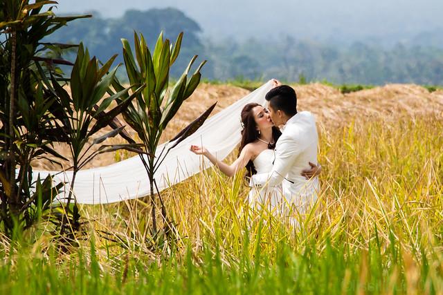 Love is beautiful...Bali  Jatiluwih