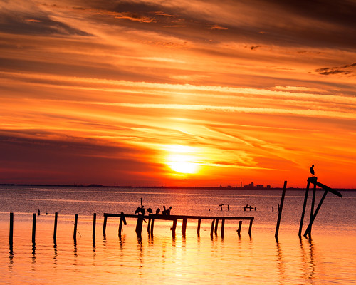 travel sunset red sky orange sun heron birds silhouette clouds pier al travels nikon cloudy urbandecay alabama daphne traveling hazy cloudysky d800 mobilebay travelphotography oldpier vividsunset santocommarato