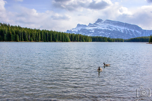 Banff, Alberta | by candicegordon