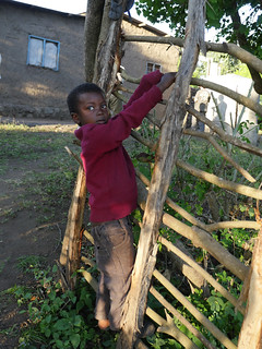 Student on fence