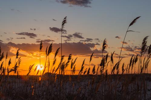 sunset newyork longisland jonesbeach