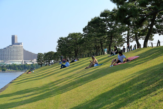 take a rest on grass.