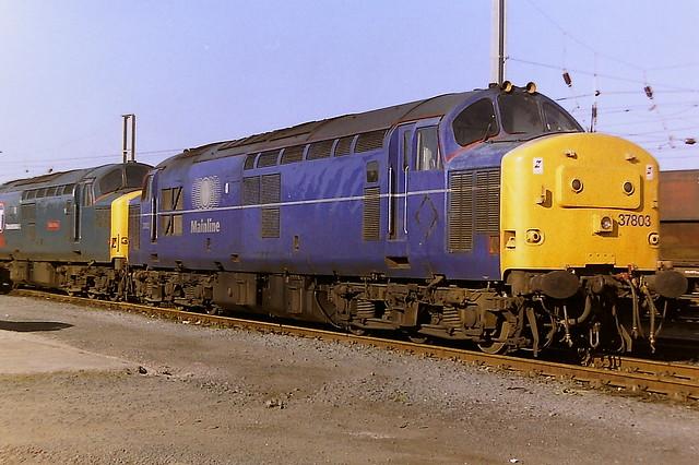 BRITISH RAIL MAINLINE LIVERIED 37803