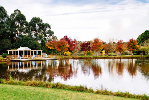 australia canonef35mmf14lusm canoneos7d faganpark galston lake newsouthwales sydney water landscape tree