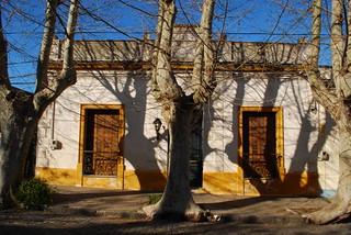 UY Colonia 0908 (14)