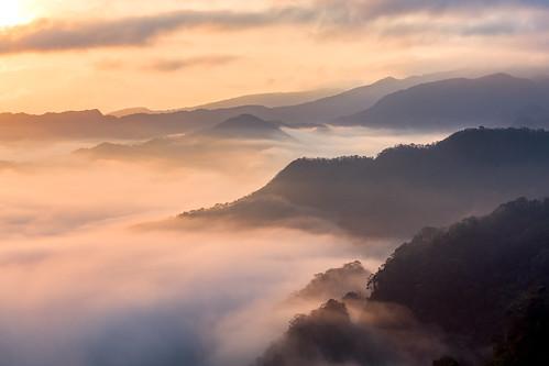 sunrise taiwan taipei 雲海 茶園 坪林 晨光 南山寺 漁光村