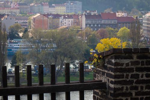 Keski-Euroopan kevät