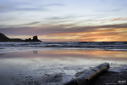 sunset color reflection beach waves driftwood margaree