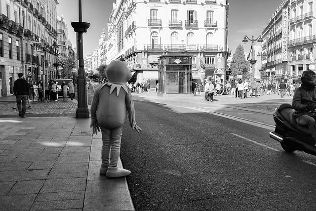 Kermit needs to cross.