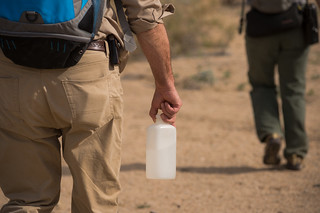 Always Carry Water in the Desert | by Joshua Tree National Park