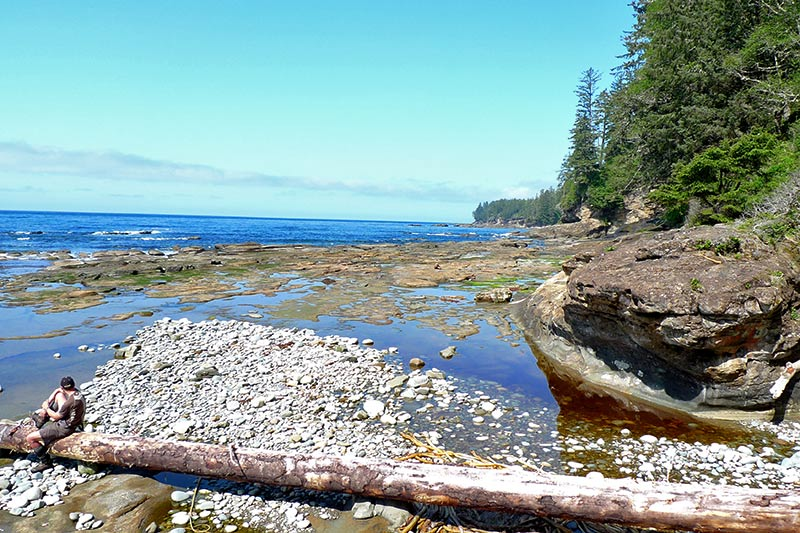 The shoreline along the West Coast Trail in Pacific Rim National Park, Vancouver Island, British Columbia