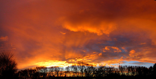 morning trees red sky panorama orange clouds sunrise colorado boulder cloudsstormssunsetssunrises