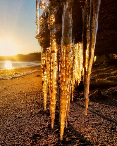 golden sunset coolest winter icicle happiness frozenlandscape softlight