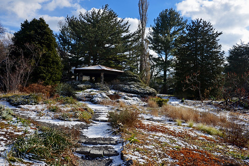 newyorkcity nycparks bronx botanicalgarden wavehill riverdale wildgarden gardenpath winter