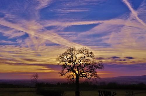 sunrise haughmond hill shropshire sky clouds light colour tree silhouette hills field lines trails