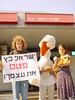 מיצג ישראל כץ 2004