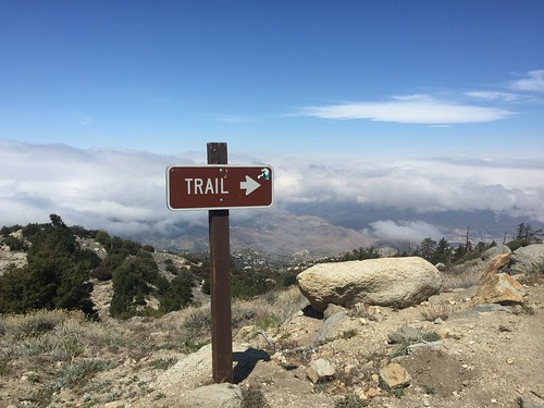 PCT: Day 17