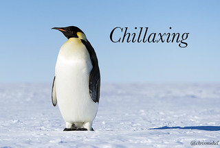Chillaxing | by Christopher.Michel