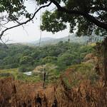 Mi, 01.04.15 - 14:40 - Sicht auf Paso del Mango