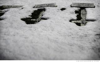 hollywood cemetery   by crystalliora ✦ vesper704