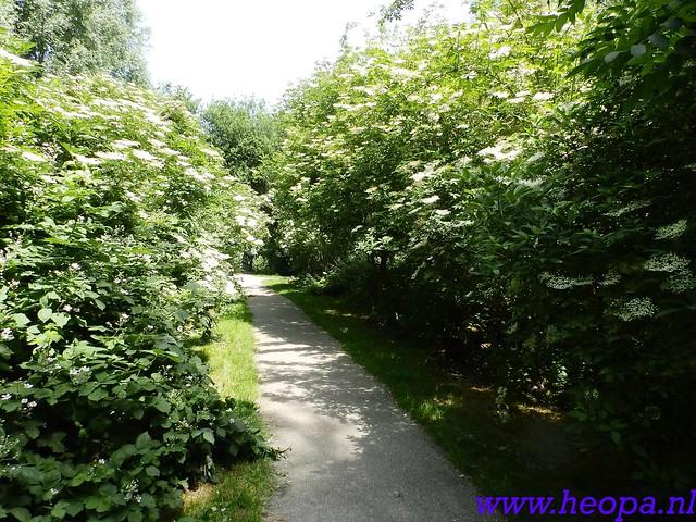 b 2016-06-08          Dag 02                  Almeerdaagse   15 Km  (32)