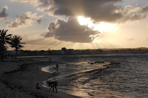 soleil nuage arbre plage guadeloupe glp lemoule