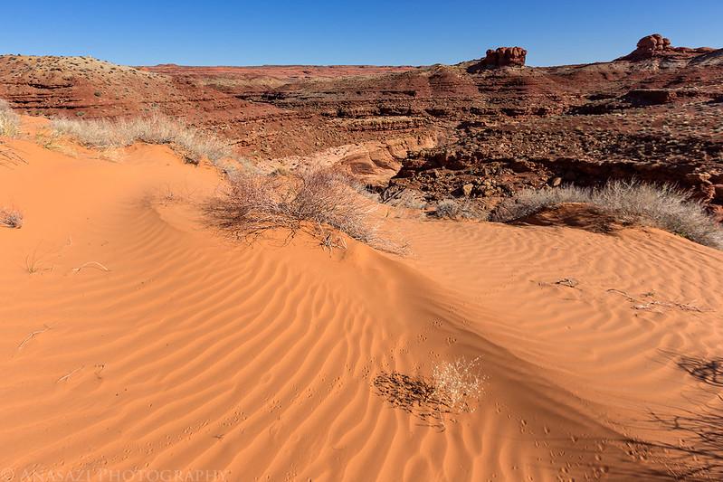 Sandy Hike