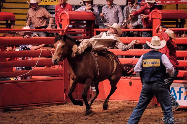 Bronco Rider #2