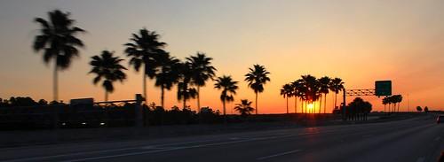 road sky sunlight sunrise florida palmtrees centralflorida canoneosrebelt5 chadsparkesphotography