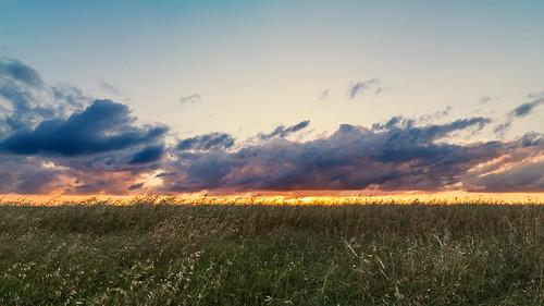 sunset sky grass clouds evening spring texas panoramic