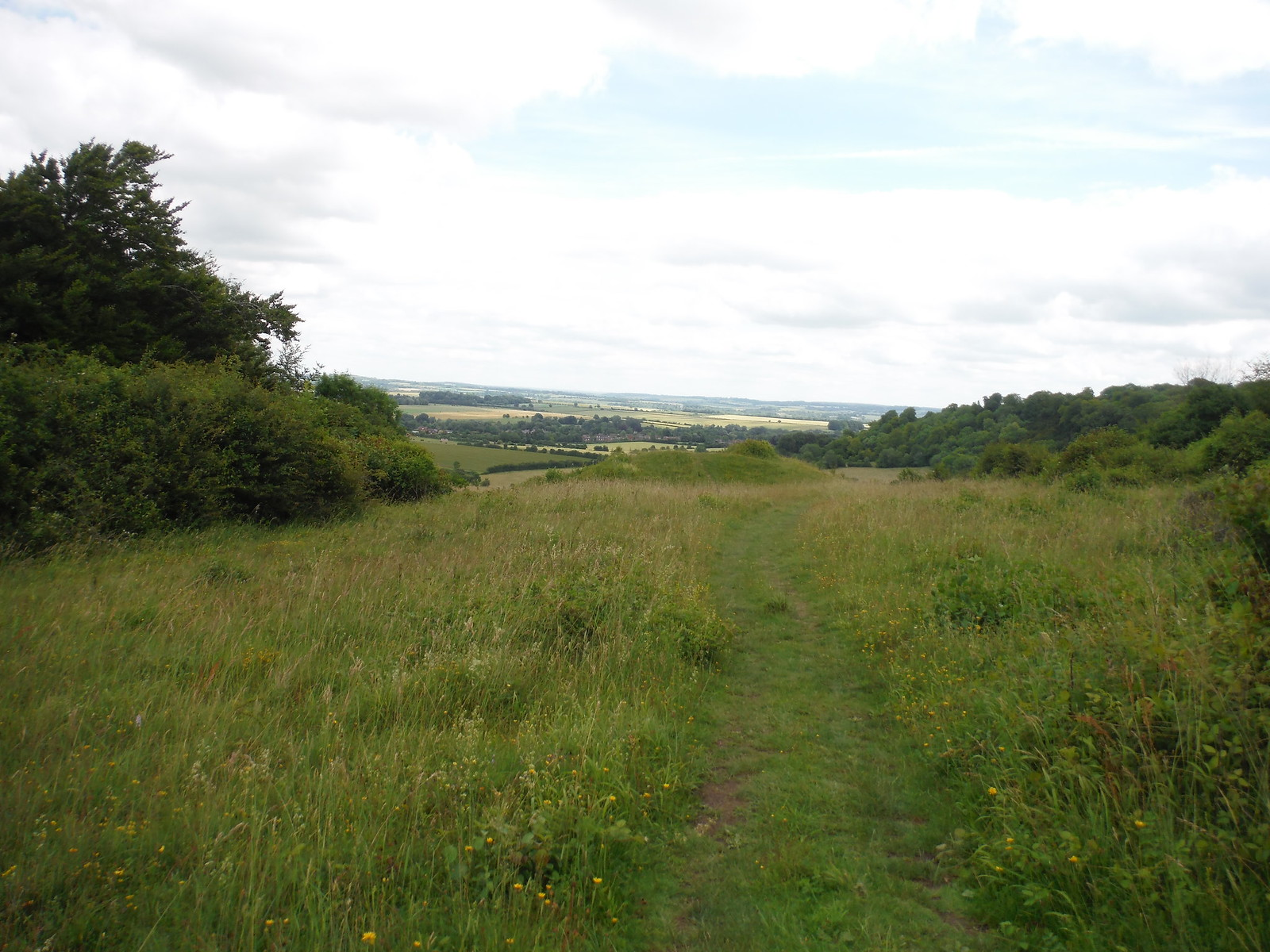 'Plum Pudding' Round Barrow and Wallop Brook Valley SWC Walk 265 - Dean to Mottisfont & Dunbridge