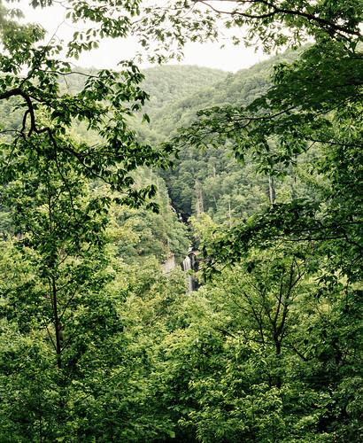 statepark travel trees summer green nature water creek forest us waterfall stream view unitedstates outdoor hiking cleveland southcarolina hike falling trail overlook caesarshead ravenclifffalls caesarsheadstatepark