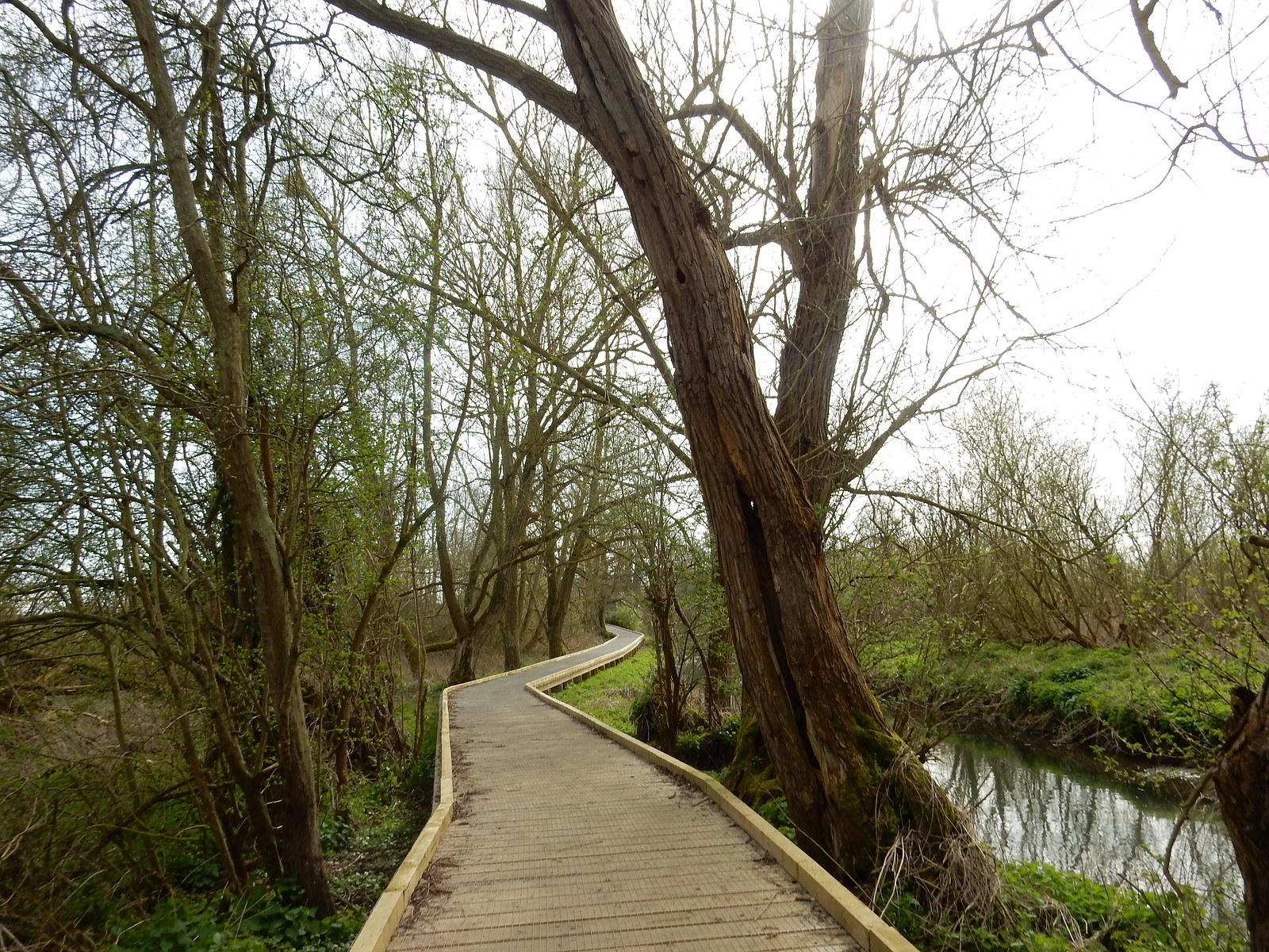 Boardwalk Kelvedon Circular