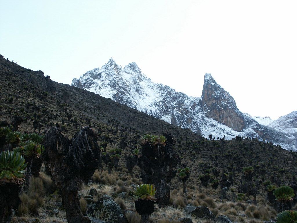 Batian (5199m), Nelion (5188m) and Pt John (4883m) from Mackinder's Camp.