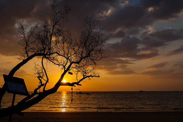End of Day - _TNY_2644