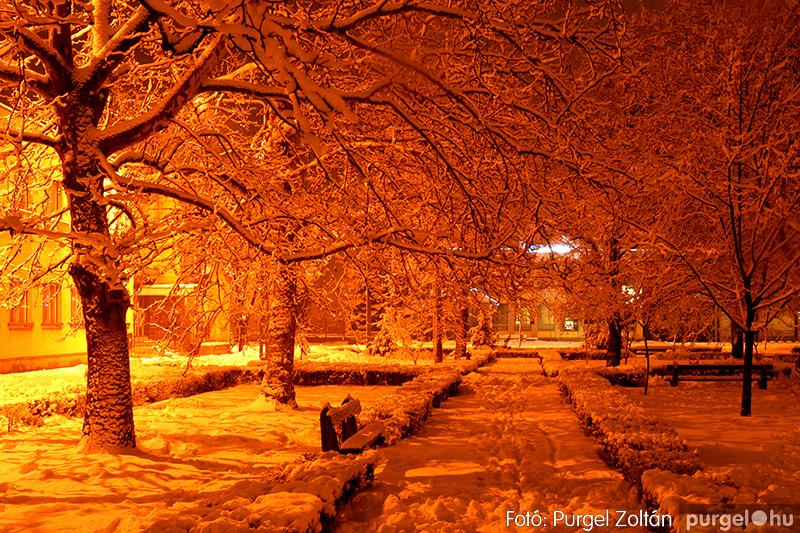 Téli éjjel a parkban