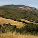 Mt. Diablo June 24 2006