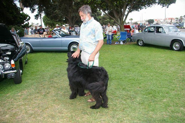 2006CCBCC_Show266