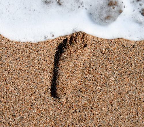 footprint   by lanier67